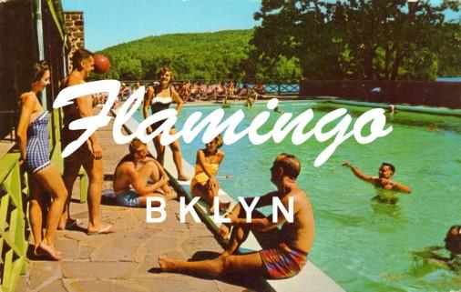 valeria_swimming_pool_oscawana_ny